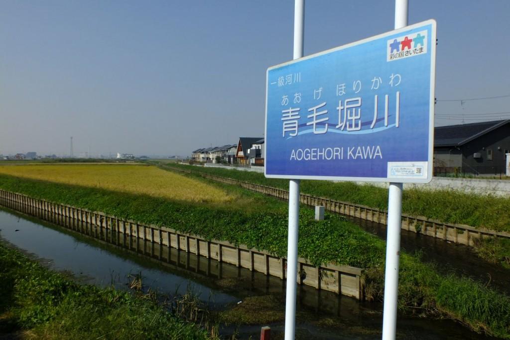 青毛堀川001