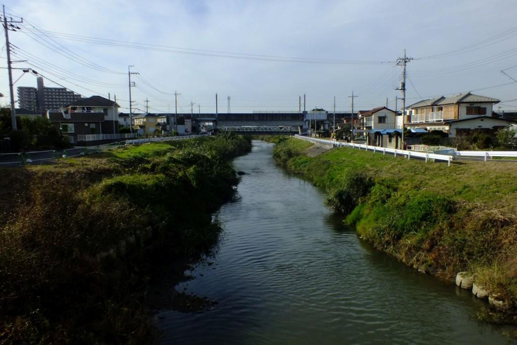 青毛堀川028